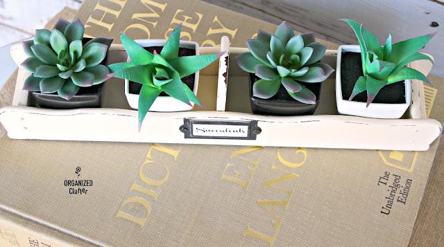 Thrift Shop Cracker Tray for Dollar Tree Succulents/$5 Decor organizedclutter.net