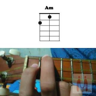 Chord AM ukulele senar 3