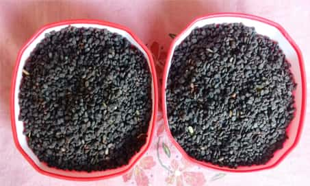 bakuchi seeds in the treatment of vitiligo
