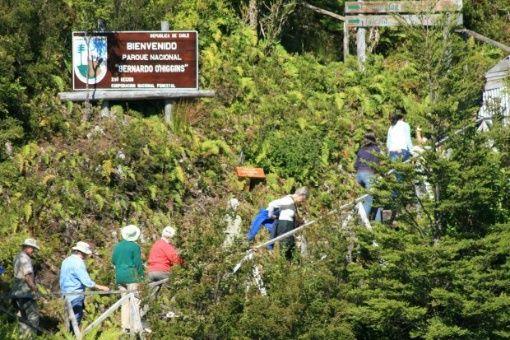 Abrirán parques nacionales en Chile en medio de la pandemia