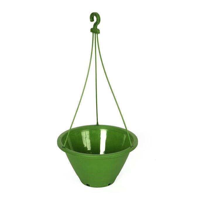 Danshil Climber Hanging Pot - 8.6 Inches
