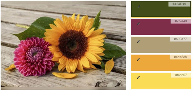 yellow sunflower and fushcia flower color palette
