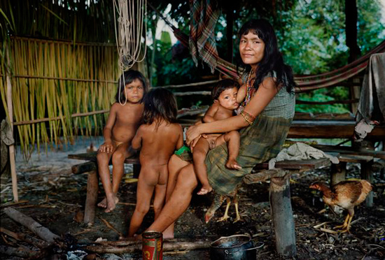 zhadnye-geny-ehkonomii-kak-nasledie-predkov-delaet-nas-tolshhe