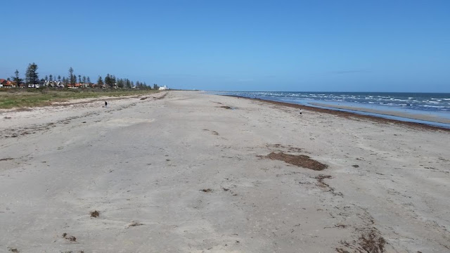 Looking southwards along a wide expanse of sandy beach at Largs Bay, South Australia. The sky is clear and blue, a line of pine trees and grasses can be seen along the edge of the sand where there used to be dunes.