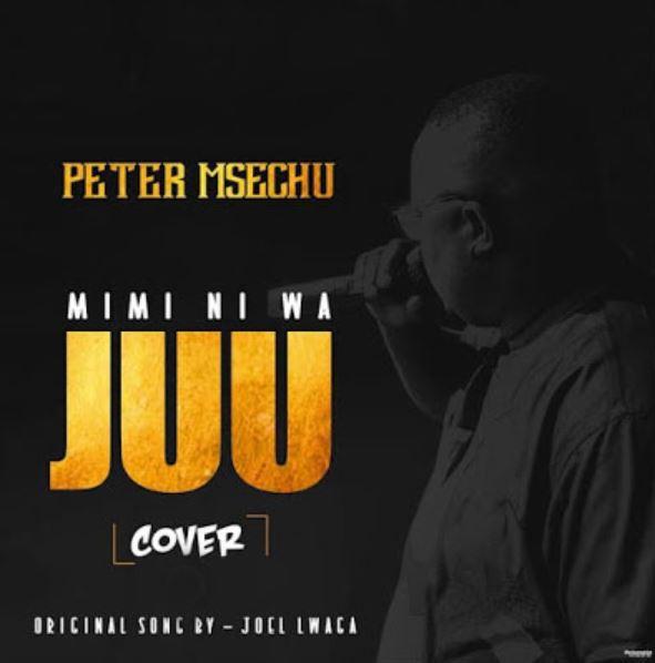 Peter Msechu - Mimi ni Wajuu