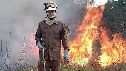 Η Βραζιλία αναλαμβάνει δράση για τις πυρκαγιές στον Αμαζόνιο