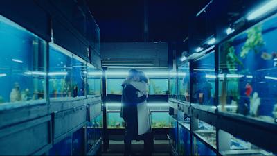 Little Fish, a Pérola Pandémica da ICF Films Que Será Lançada em 2021