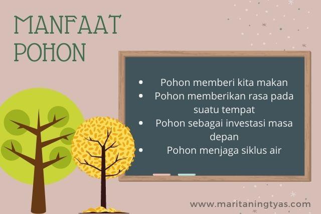 pohon dan manfaatnya bagi hidup