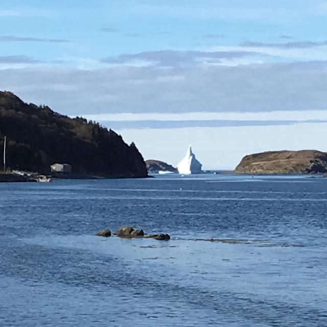 Newfoundland, tiny trailer camping, icebergs
