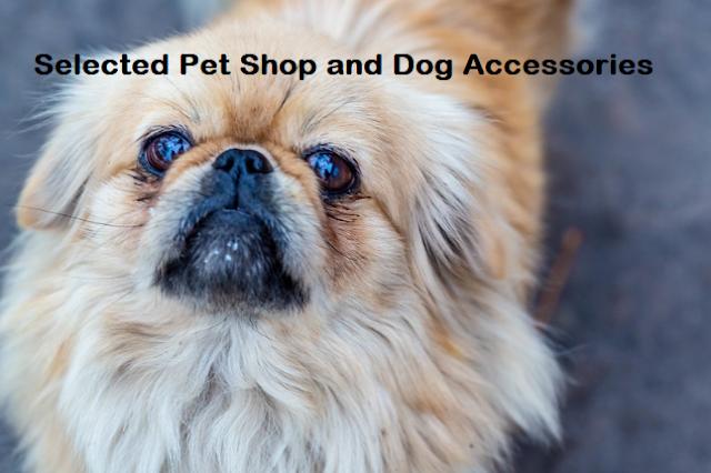 good dog shop in ghaziabad, ghaziabad dog shops, dog shop near me ghaziabad, best dog shop in indirapuram ghaziabad, dog price in indirapuram ghaziabad, dog shop in raj nagar ghaziabad