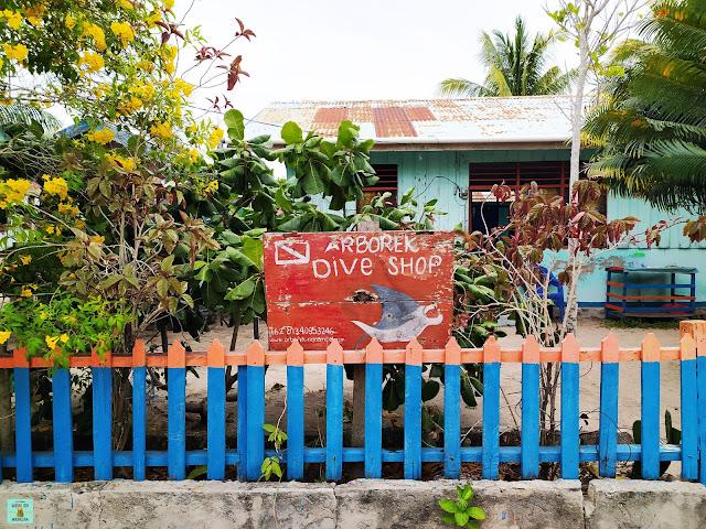 Arborek Dive Shop, Raja Ampat