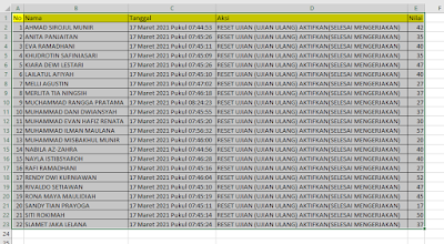 Auto Column Width in Excel