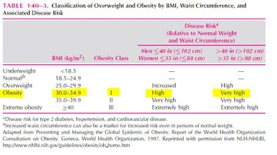 9 Penyebab Obesitas pada Anak dan Balita