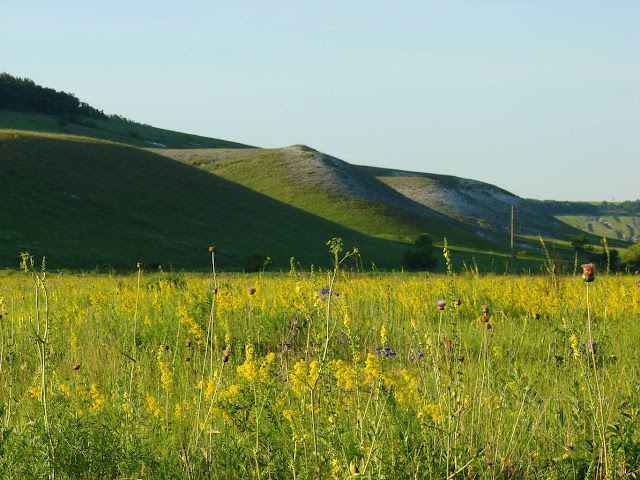 красивые места харьковской области, Меловые горы