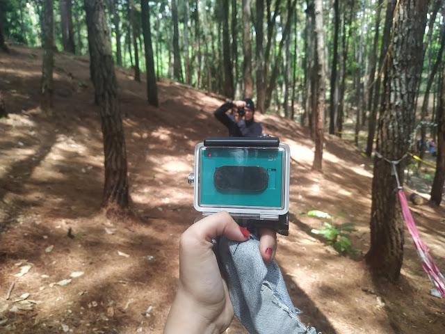 wisata hutan pinus candika