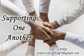 supporting one another life's a polyp