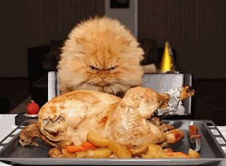 thanksgiving-memes-funny
