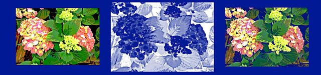 con un diseo de hortensias hemos encontrado un lienzo una postal y dos cojines todo evocador de hortensias perfectas