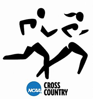 Room 6: Cross Country
