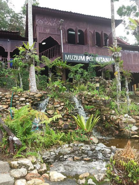 Jerai Forestry Museum, tourism, mount jerai, gunung jerai, butterflies, bugs, tree, from malaysia,