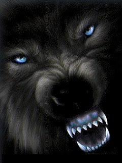 download besplatne slike za mobitele vuk
