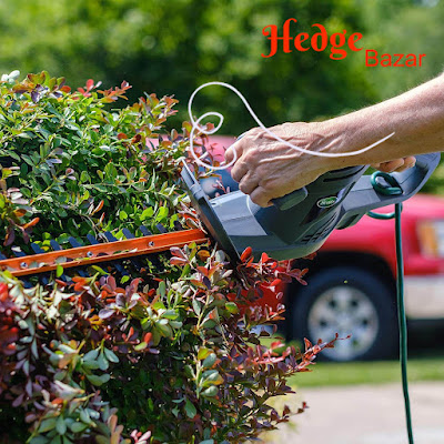 Best Professional Electric Hedge Trimmer