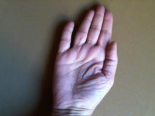 Dedo Indice largo