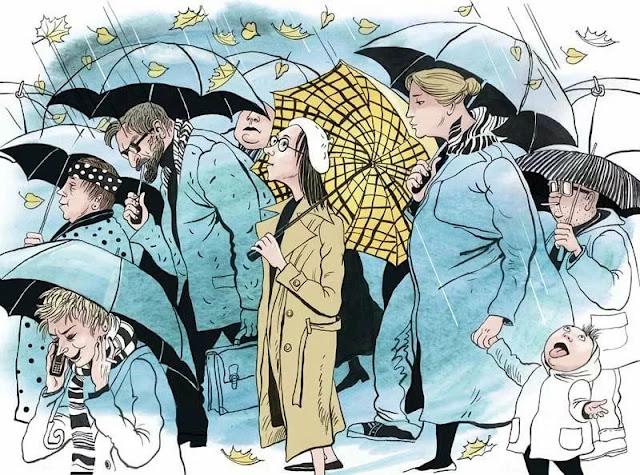 Как голландский «зонтик» превратился в русский «зонт»