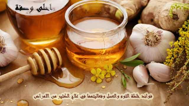 الثوم,لعسل,فوائد,خلطة,علاج,الامراض,فوائد خلطة الثوم والعسل وفعاليتهما في علاج الكثير من الامراض
