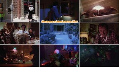 Gremlins 1984 - HD - DCC
