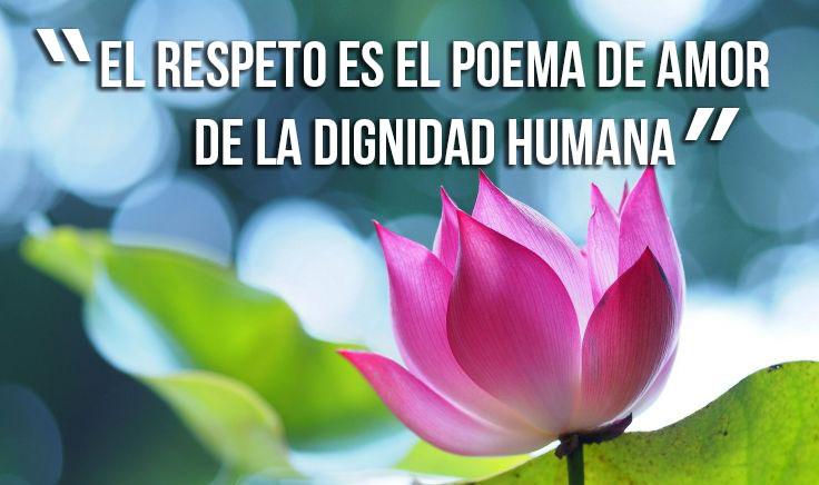 Frases De Respeto Colección 03 Frases De La Vida