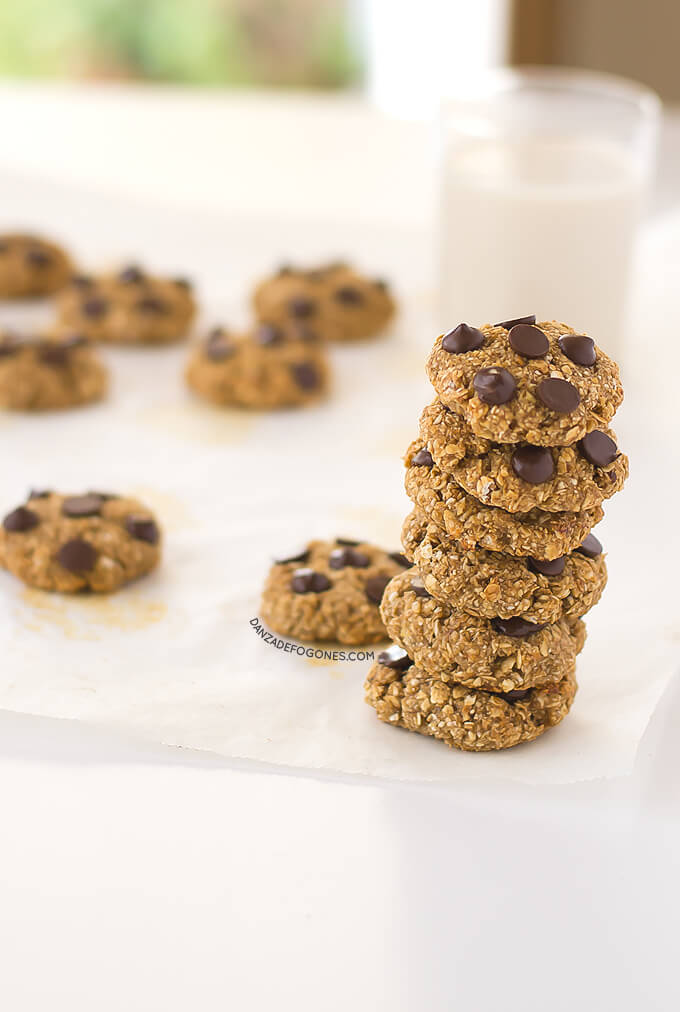 Oatmeal and chocolate cookies | danceofstoves.com