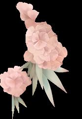 PNG #16 Flores Rosadas
