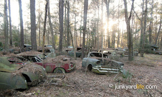 Scrap yard owner stored cars on wooded property since 1991.