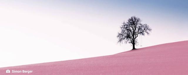 ambiente de leitura carlos romero cristina porcaro cronica mensagem filosofia de vida otimismo esperanca aqui-e.agora imprevisibilidade pandemia isolamento solidao solitude