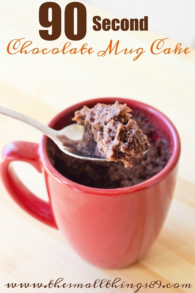 90 Second Chocolate Mug Cake That ANYONE Can Make!