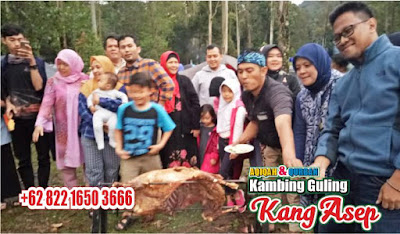 Kambing Guling di Ciwidey Bandung ! Bebas Ongkir, kambing guling ciwidey bandung, kambing guling ciwidey, kambing guling bandung, kambing guling di bandung, kambing guling,