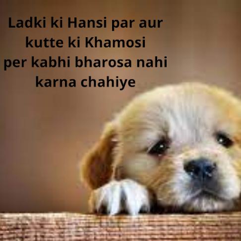 {30+} Best Attitude Shayari for Boys & Girls 2021