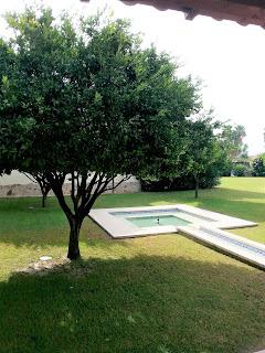 Ritorna l'appuntamento in giardino per il Lantana Resort e tanti altri