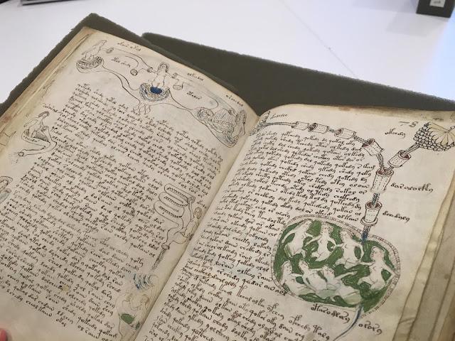 Gizemi Çözülemeyen Kitap: Voynich Elyazması