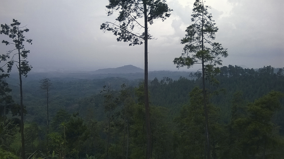 Trekking Bedengan Bukit Jabal Gunung Malang Jalur Petualang