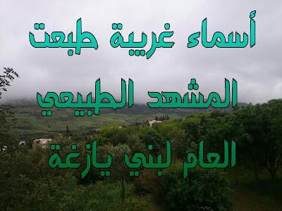 أسماء غريبة طبعت المشهد الطبيعي العام لبني يازغة -عادل اليازغي-