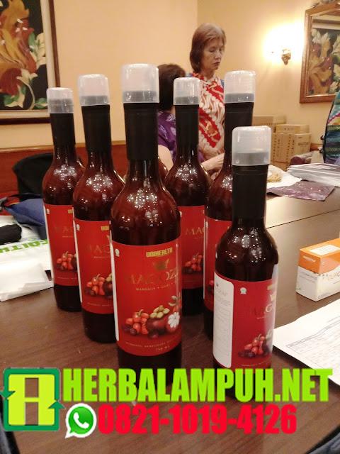 manfaat dan khasiat, magozai, jus herbal, cara pesan, cara order, pemesanan magozai