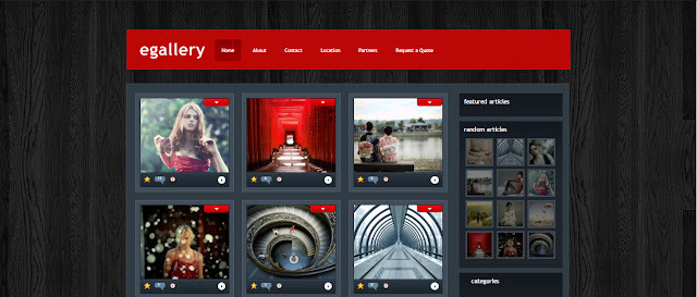 eGallery- Grid Style wordpress Theme for Photogrpahy