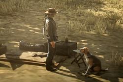 Tomcator und sein Hund Santo...