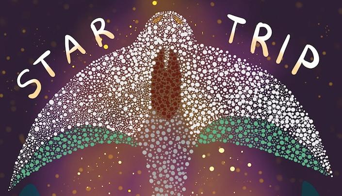 Descrição da imagem: Logotipo da história, que consiste em várias estrelas disposta de forma a parecerem com uma arraia. Fundo azul escuro, como se fosse o universo. Com o título da história no meio: Star Trip.