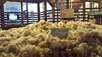 National Wool Musuem Geelong