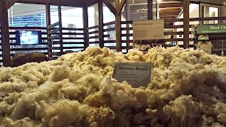 National Wool Musuem Geelong