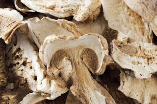 Cogumelos secos: como escolher?
