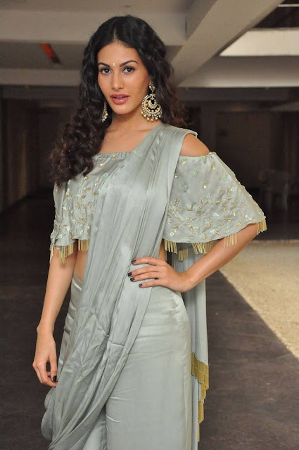 Amyra Dastur Stills At Manasuku Nachindi Movie Pre Release Event